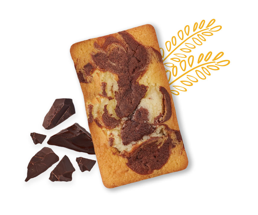 Marble Pound Cake with chocolate pieces